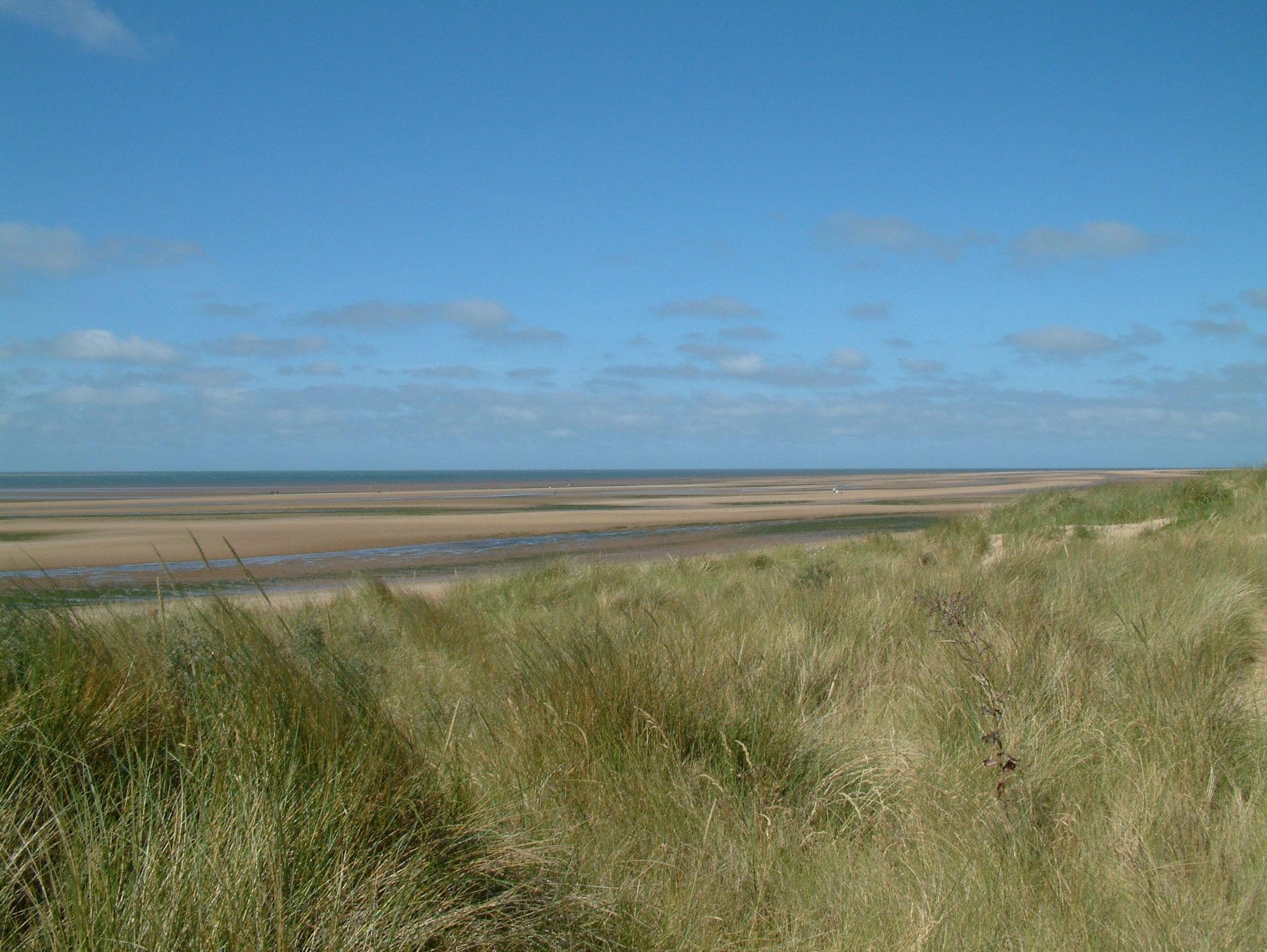 Dunes around the norfolk coast with sand grass on them